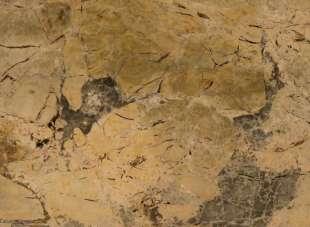 Giallo Etrusco